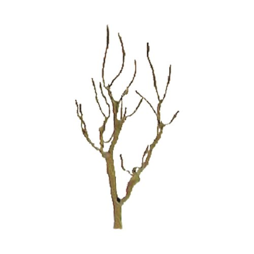 "JTT Scenery Products Professional Tree Armatures: Mountain Gum, 3"" - 1"