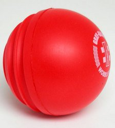 Gray-Nicolls Wobbleball Cricket Ball