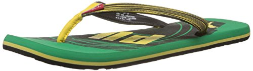 Puma Puma Unisex Jive Ind. Flip Flops Thong Sandals (Brown)