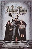 The Addams Family [VHS] [1991]