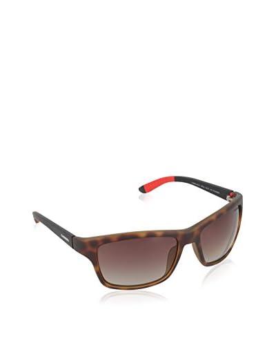 Carrera Occhiali da sole 8013/SLA Avana/Nero