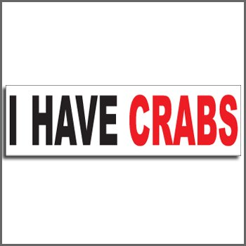 Bumper Sticker Magnet - I Have Crabs