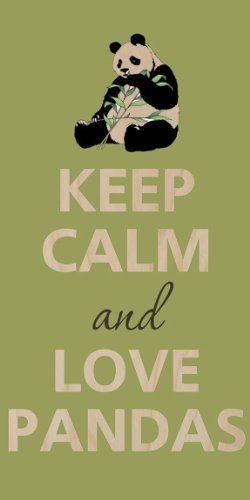 Keep Calm And Love Pandas Panda Bear - Plywood Wood Print Poster Wall Art front-806331