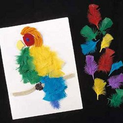 Collage Feathers Craft Pack