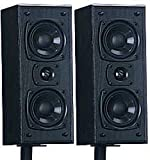Atlantic Technology Speaker - 171 LR