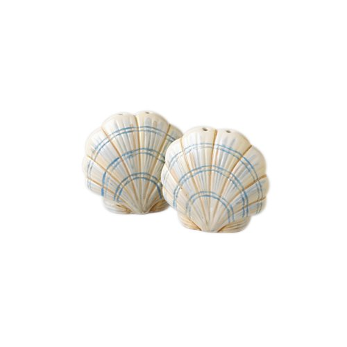 Buy Pfaltzgraff Beachcomber Salt & Pepper Set
