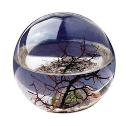 Ecosphere - Large Round