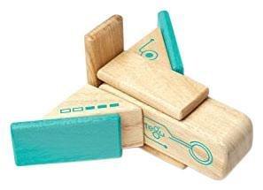 Purchase Robo Tegu Magnetic Wooden Block Set