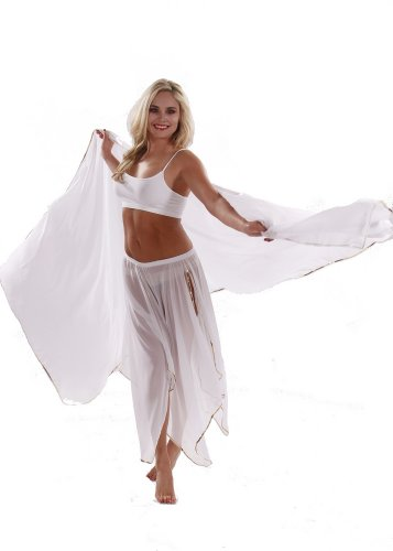 Belly Dance 4 Panel Skirt & Veil Costume Set | Amani