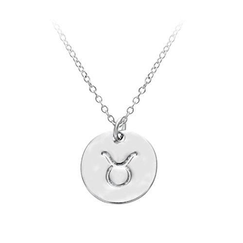 hacool-12-zodiac-sign-tag-constellation-s925-sterling-silver-horoscope-astrology-disc-charm-necklace
