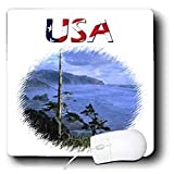 777images Designs Graphic Design Patriotic - Digital Oil Painting of Oregon Coast with USA text design - Mouse Pads