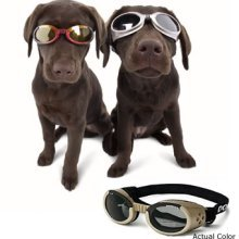 Sunglasses with Metal Frame & Smoke Lens - Chrome, X-Large
