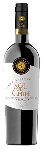 2009 Case Sol de Chile 12x750 mL Wine