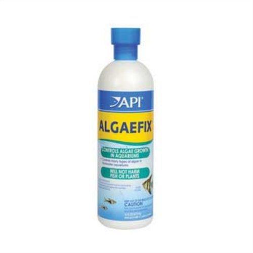 api-algaefix-algae-control-16-ounce