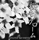 桜モノクローム(TYPE A)(在庫あり。)