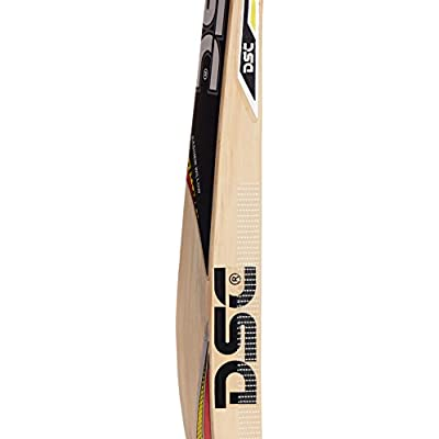 DSC Scorer Kashmir Willow Cricket Bat, Short Handle