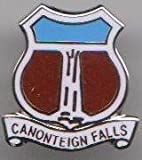 Canonteign Falls - Devon Town Crest / Flag Pin Badge