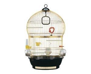 cage oiseaux achat en ligne pas cher. Black Bedroom Furniture Sets. Home Design Ideas
