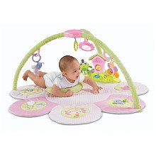 Fisher Price Perfectly Pink Musical Fairyland Gym