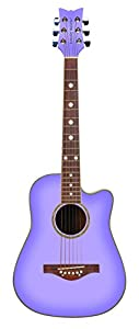 Daisy Rock Wildwood Acoustic Guitar from Daisy Rock