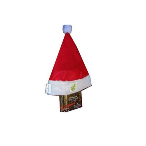 Duck Dynasty Santa Hat with Bonus Duck Dynasty Notepad & Pen! - 1