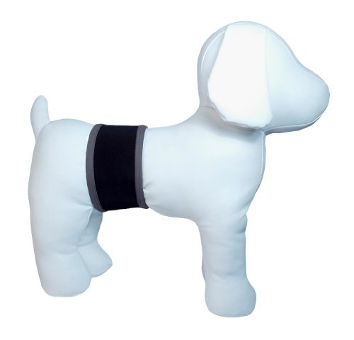 Playapup Dog Belly Band, Black, Small