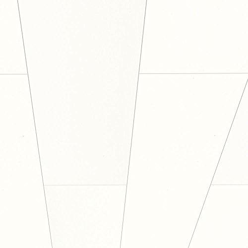 Avanti-Wandpaneel-und-Deckenpaneel-Hochglanzweiss-1300-x-254-x-10-mm