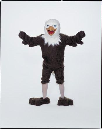Costumes For All Occasions Cm69010 Eagle Mascot Complete