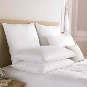 Down Lite ® Primaloft ® Queen Pillow