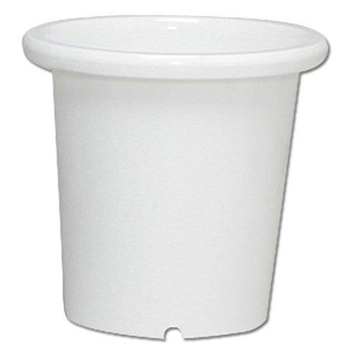 アイリスオーヤマ 鉢 SE ケンガイ鉢 8号 ホワイト