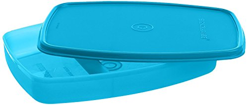 Signoraware Slim Lunch Box, T Blue
