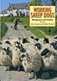 Working Sheepdogs: Management and Training (185223718X) by John Templeton