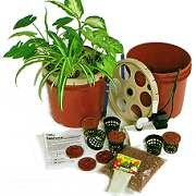 RainForest 36-Pump Sys