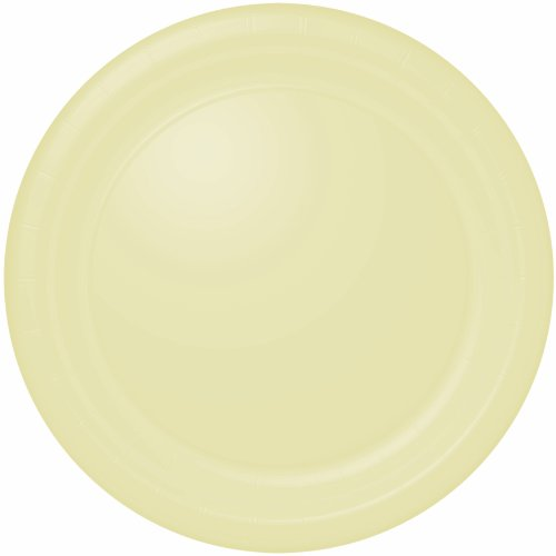 Off White Dinner Size Paper Plates - Ivory Plates (24 Count) - 1