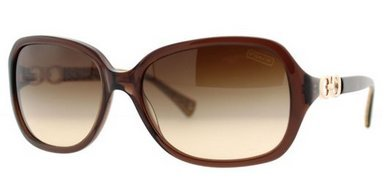 Image of Coach Women 1099081002 Brown/Brown Sunglasses 58mm