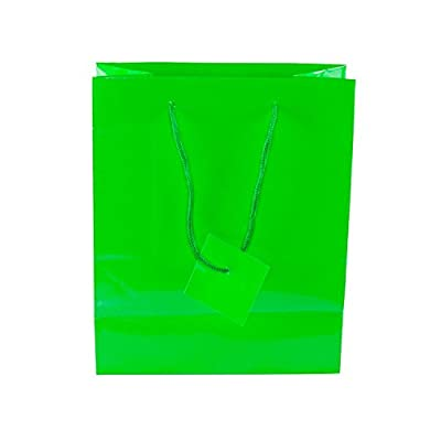 Neon Colored Blank Paper Party Gift Bags Rainbow Assortment with String Handles for Birthday Favors, Snacks, Decoration, Arts & Crafts, Event Supplies (12 Bags) by Super Z Outlet from Super Z Outlet