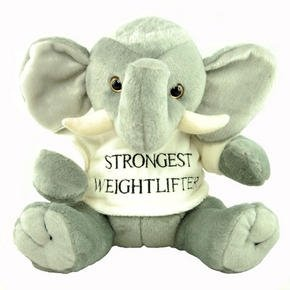 Elephant Soft Toy - Cute & Cuddly, With T-Shirt