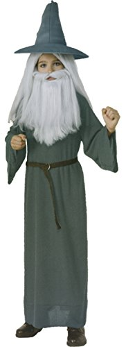 Boys Hobbit Gandalf Kids Child Fancy Dress Party Halloween Costume