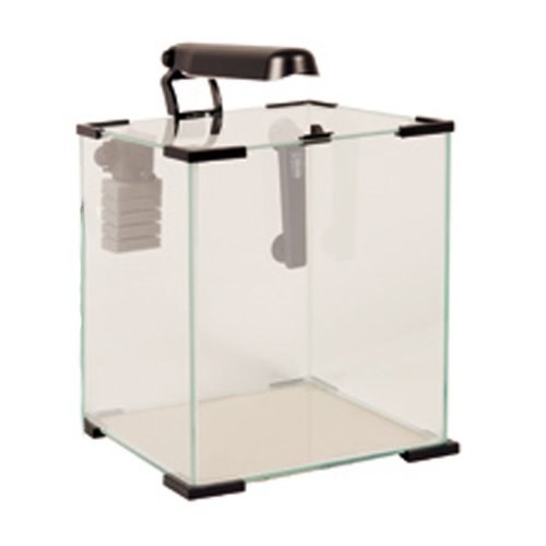 Pin acheter aquarium 30 litres pas cher on pinterest for Aquarium 30 litres pas cher