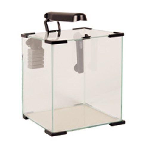 Pin acheter aquarium 30 litres pas cher on pinterest for Gros aquarium pas cher