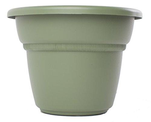Bloem MP1013-42 Milano Planter, 12-Inch, Living Green (12 In Plastic Pot compare prices)