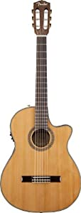 Fender Classic Design CN-240SCE (V.2) Thinline Classical Guitar, Natural
