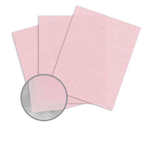 cheap vellum paper Cheap joe's art stuff offers a wonderful selection of fine arts papers for watercolor painting, oil painting, gouache painting, drawing.