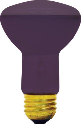 GE Lighting 22752 50-Watt BlackLight R20 Light Bulb, 1-Pack