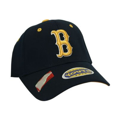 UCLA Bruins NCAA Youth 1-Fit Hat
