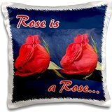 Susans Zoo Crew Flowers - two roses twins blue background rose text - 16x16 inch Pillow Case