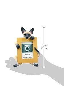 E&S Pets 35316-7 Small Cat Frames