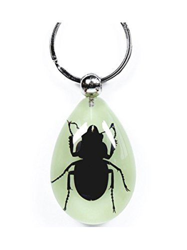 WeGlow International Real Blackish Stag Beetle Glow in The Dark Keychain
