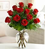 Flowers by 1800Flowers - Rose Elegance Premium Long Stem Red Roses - One Dozen