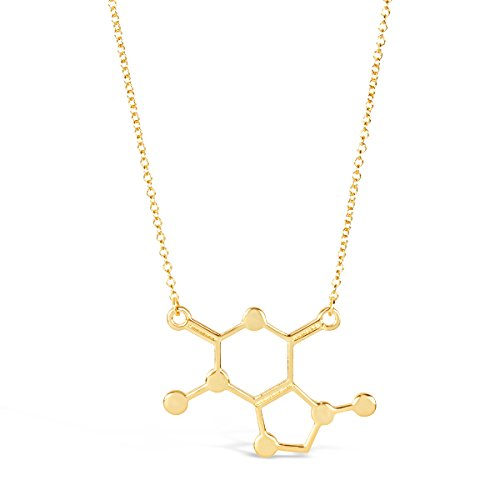 ROSA VILA Caffeine Molecule Necklace for Coffee Lovers and Enthusiasts, Unique Nerdy Scientific DNA